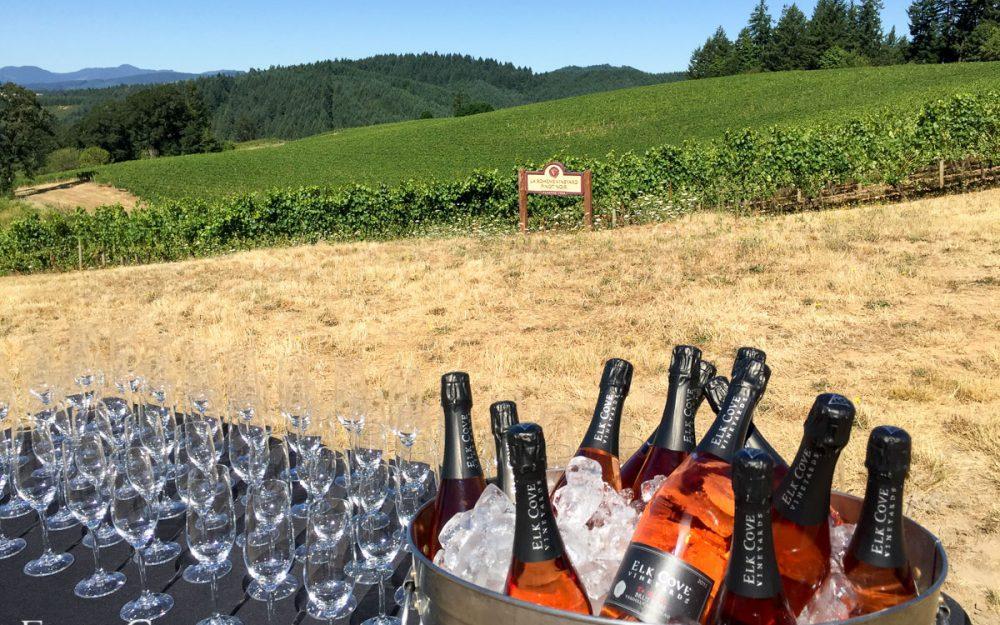 Elk Cove Wine