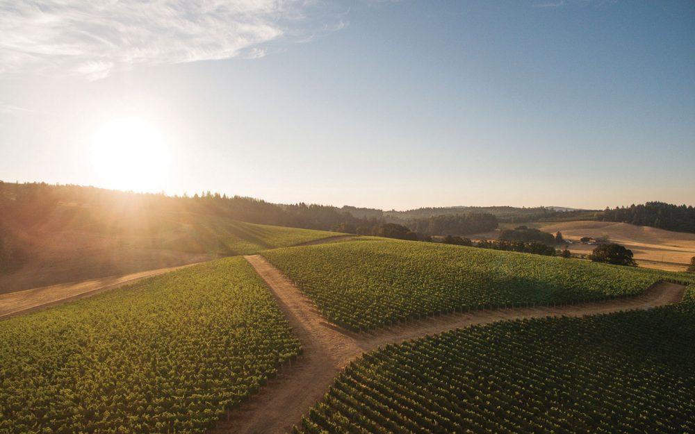 Gran Moraine Winery Yamhill-Carlton