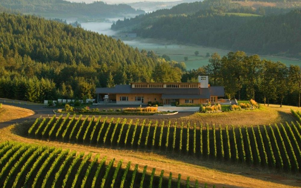 Penner-Ash Winery Oregon